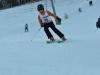 Skimeisterschaft2011Feb05_021