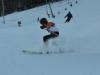 Skimeisterschaft2011Feb05_022