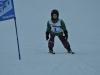 Skimeisterschaft2011Feb05_052