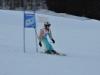 Skimeisterschaft2011Feb05_100