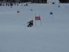 Skimeisterschaft2011Feb05_117