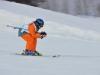 Skimeisterschaft2011Feb05_131