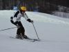 Skimeisterschaft2011Feb05_138