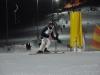 Skimeisterschaft2011Feb05_182
