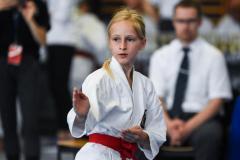 2019_07-Bayerische_Meisterschaft_Fuerth-Dietke_Holzer_Kata-cKraußer_Gitti