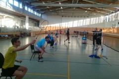 Badminton Spezial Training (Profi Trainer aus Malaysia)